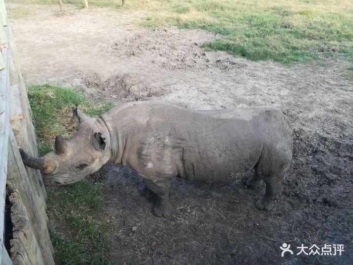 甜水野生动物保护区图片 - 第12张