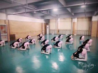 小百合艺术团(状元府校区)