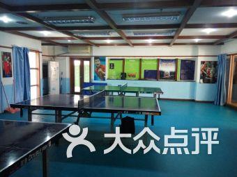 海琴乒乓球训练中心