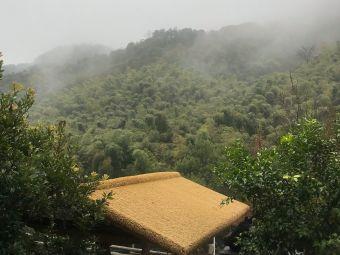 竹林农家乐