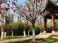 云南大学呈贡校区建筑与规划学院