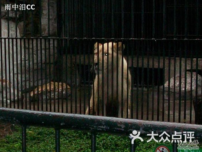 广州动物园的点评