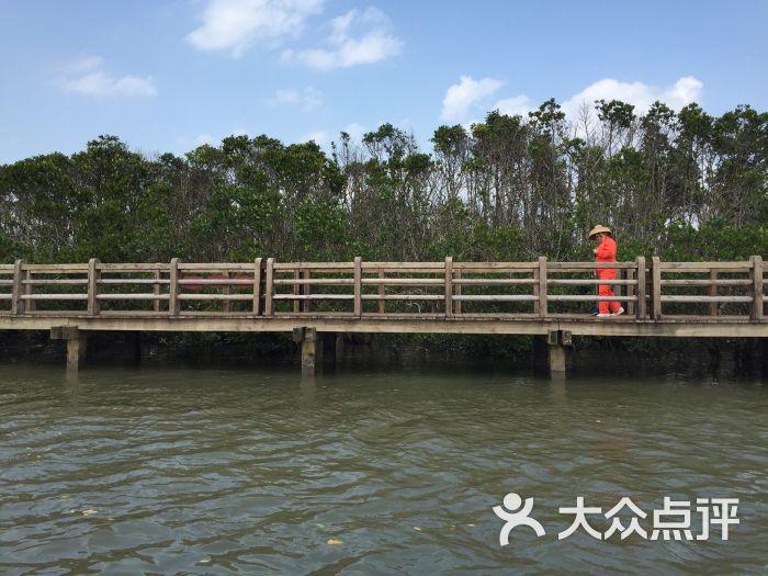 美兰区 景点 自然风光 东寨港红树林景区 默认点评