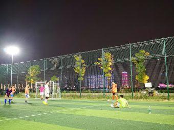 领客体育湘江玖号足球公园