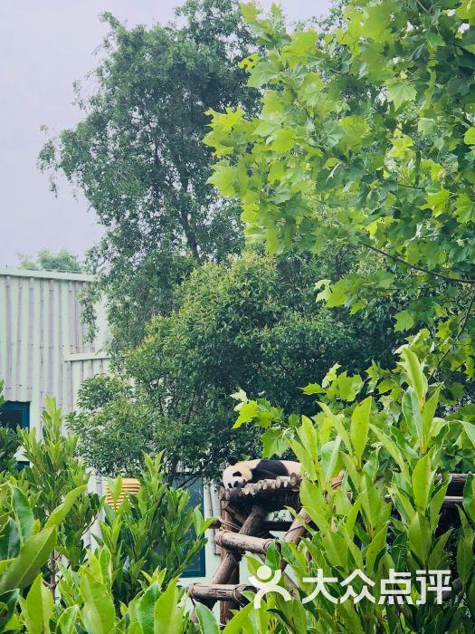 青岛动物园图片 - 第17张