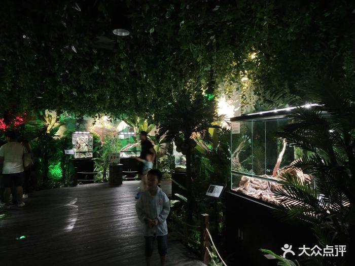 嗒咪动物奇幻乐园(杭州店)图片 - 第228张