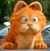 加菲猫(头像)