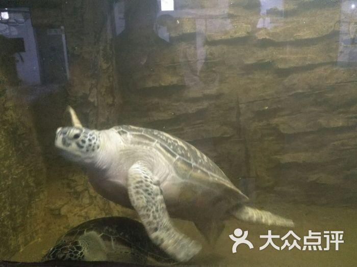 郑州市动物园图片 - 第5张