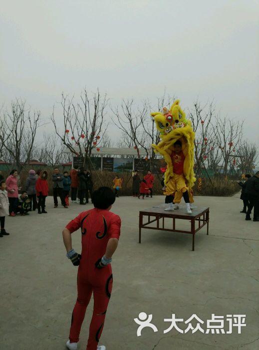 仁爱团泊湖乐乐岛-图片-天津周边游-大众点评网