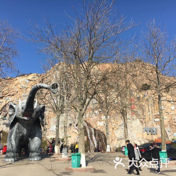 西霞口神雕山野生动物园图片 - 第7张