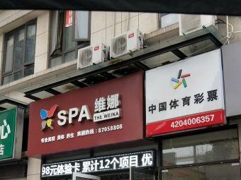 SPA維娜私人訂制護膚專家