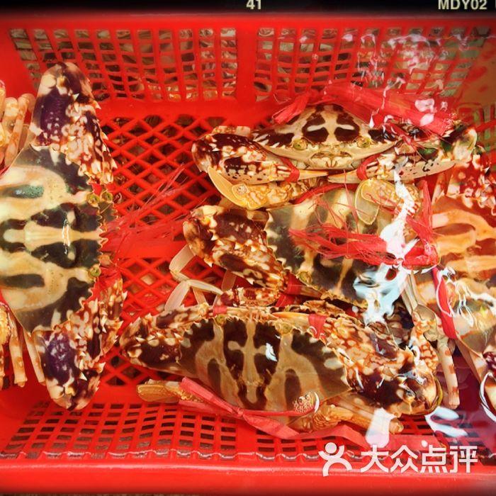 外伶仃岛海鲜街青龙图片-北京水果生鲜-大众点评网