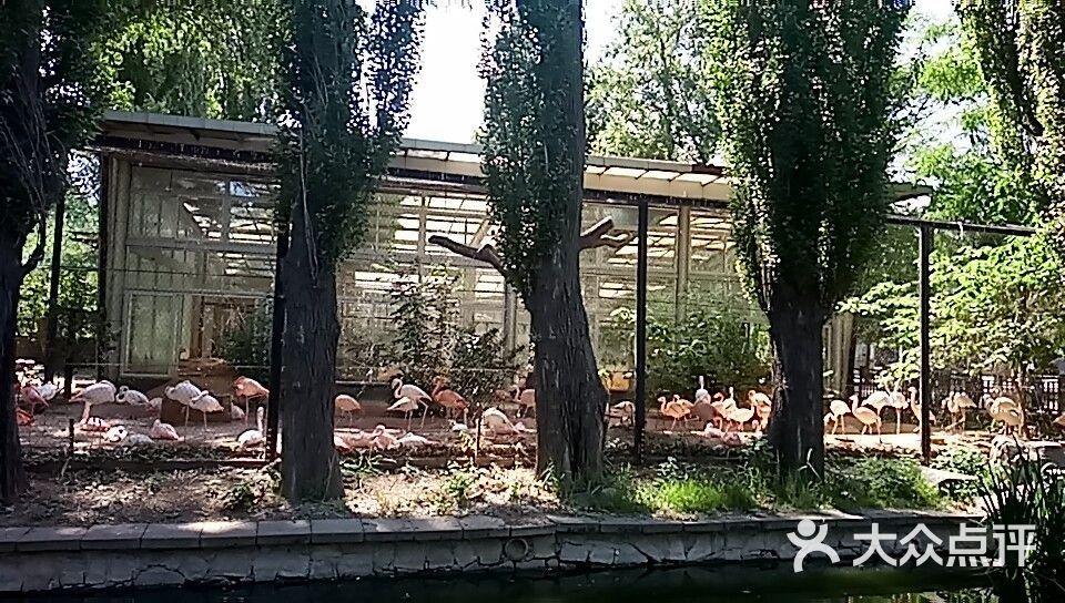 北京动物园图片 - 第7张