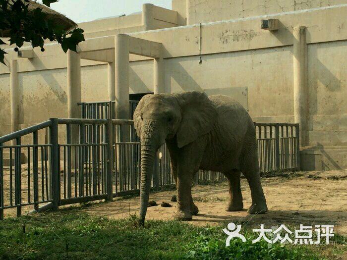 北京动物园图片 - 第2张