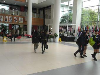 新加坡国际学校
