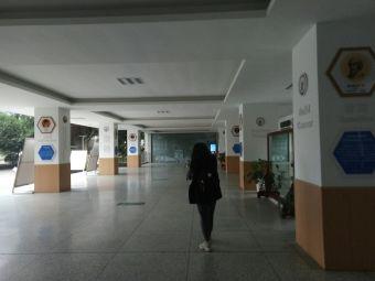 成都电子信息学校