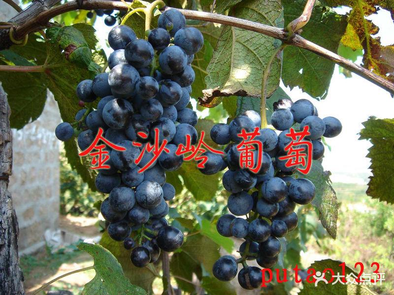 大泽山风景名胜区bc001图片 - 第10张