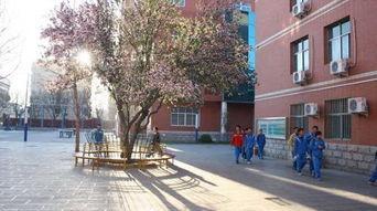 邯郸市第三中学国际部