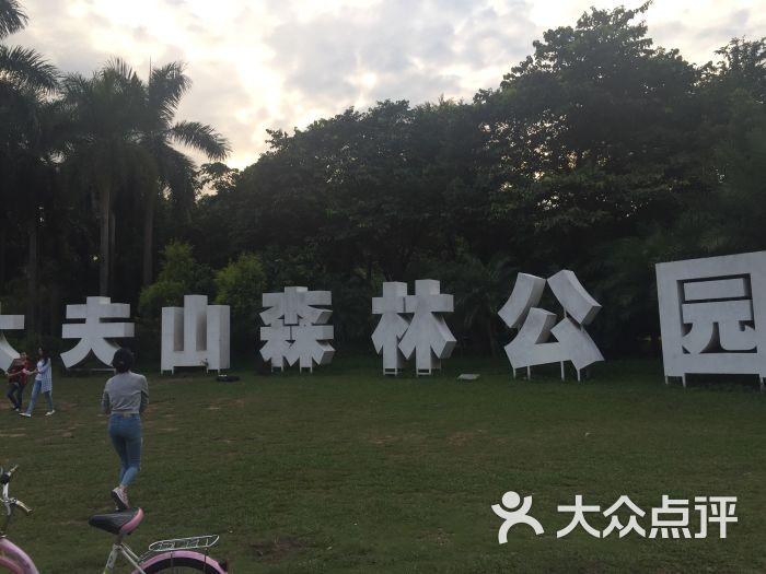 大夫山众乐烧烤场-图片-广州美食-大众点评网