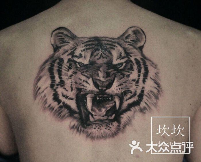 可爱的老虎图片线条的