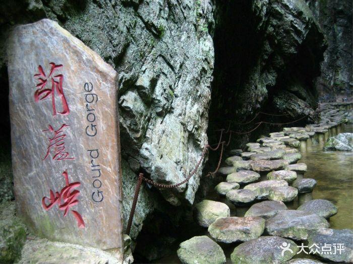牛背梁国家森林公园图片 - 第498张