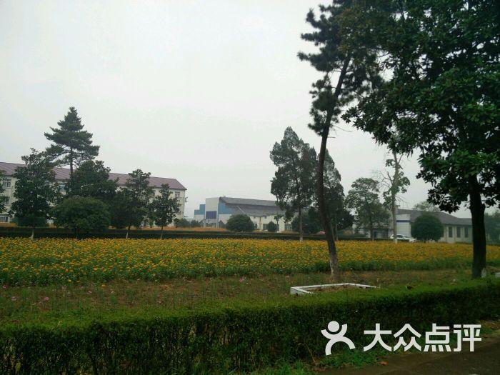 浙江省衢州高级中学-高中-四川学习培训-大众点十强图片衢州排名图片