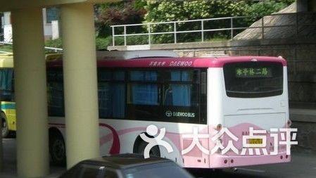 公交车青鹤线图片-北京公交车-大众点评网