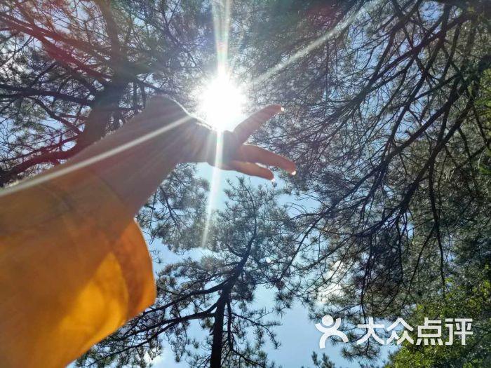 羊狮慕风景区-图片-安福县周边游-大众点评网