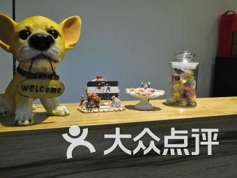 小Q宠物生活馆(南桥店)