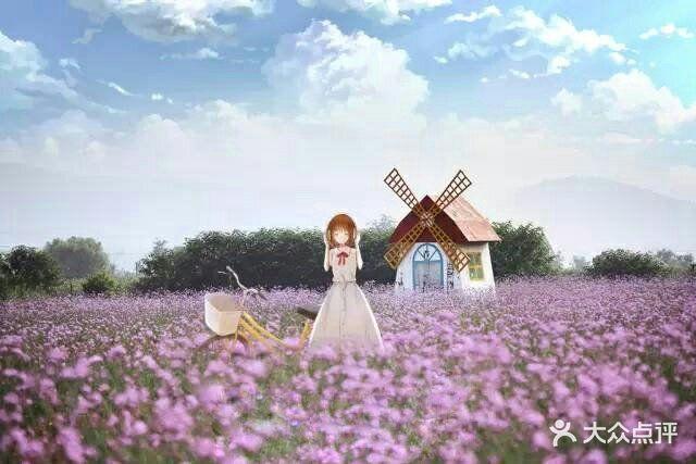 紫海蓝山薰衣草庄园-图片-贾汪区周边游-大众点评网