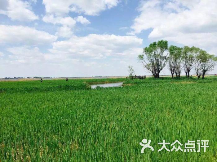 上海携程旅游(七宝巴黎春天店)图片 - 第6张