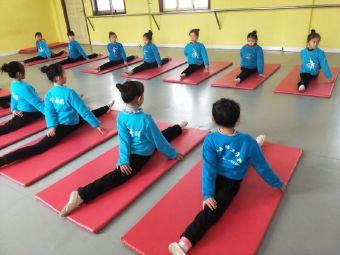 艾莎舞蹈培训中心