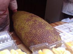 2010-04-1712.03.58-菠萝蜜