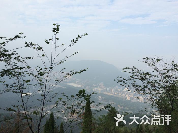 惠山国家森林公园图片 - 第6张