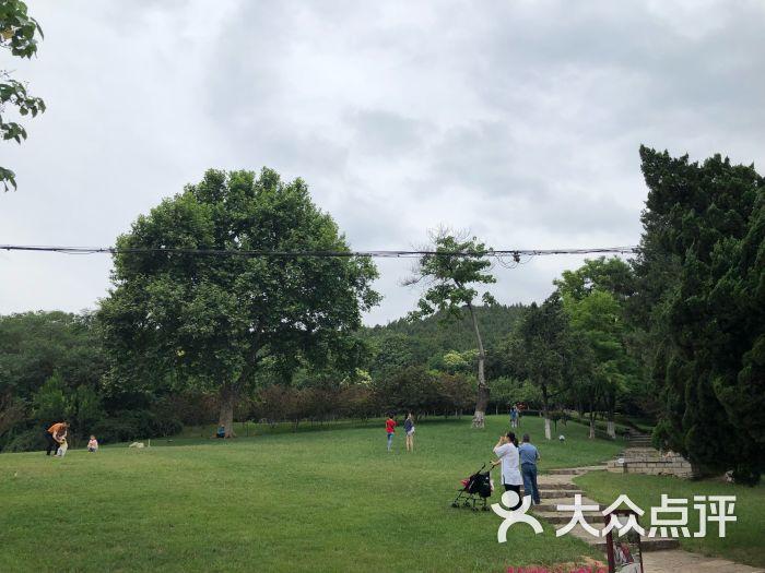 相山公园动物园景点图片 - 第3张