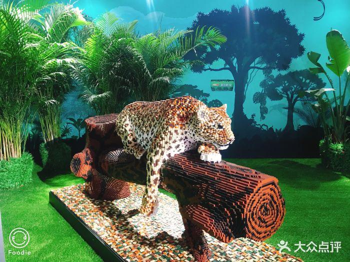 乐高动物王国环保展鸟巢站图片 - 第148张