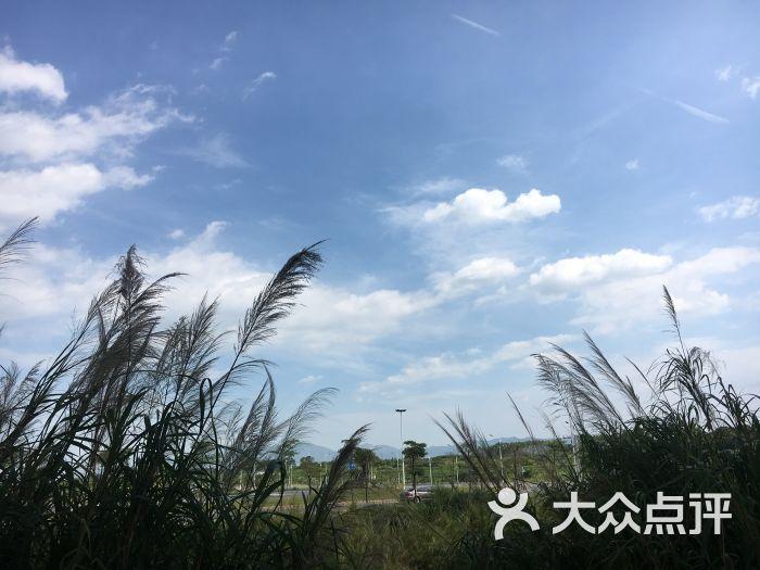 诏安火车站图片 - 第8张