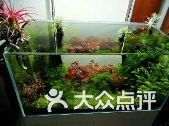 青谷水族馆