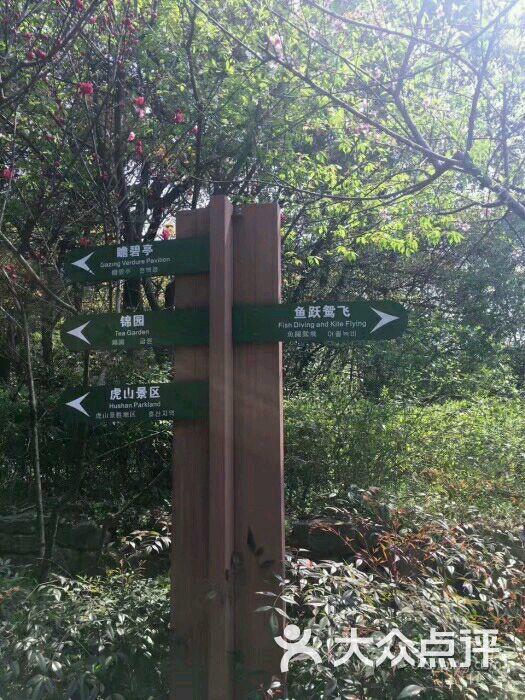 杭州半山国家森林公园