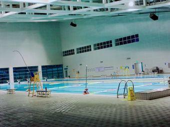 奥体中心游泳馆