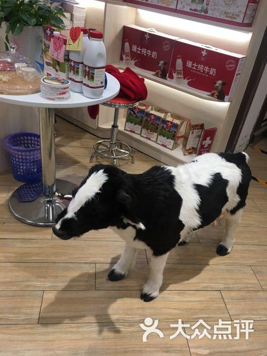 瑞慕(凯德店)-图片-青岛购物-大众点评网