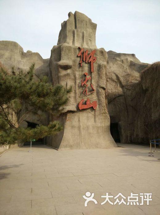 北京动物园-狮虎山图片-北京景点-大众点评网