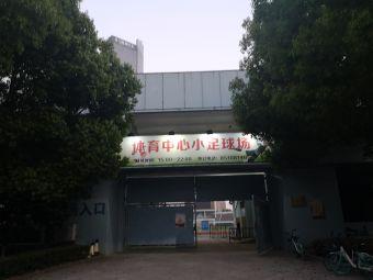 体育中心小足球场