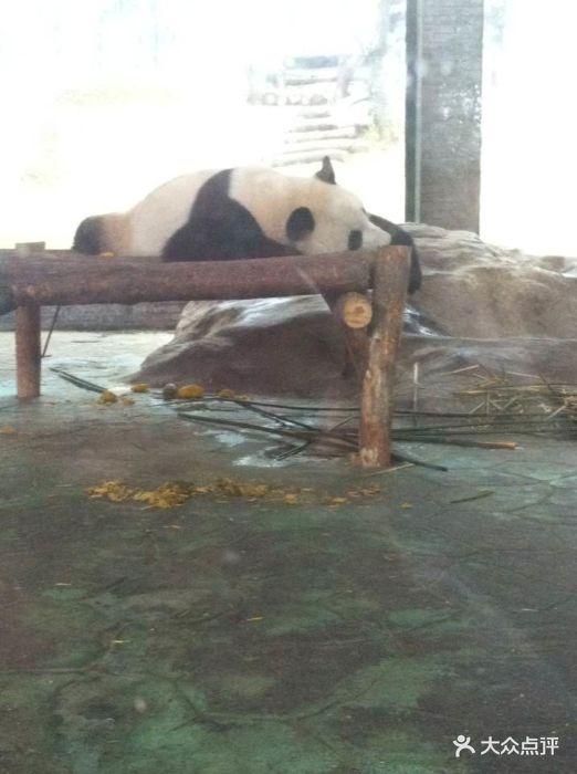 温州动物园图片 - 第3张