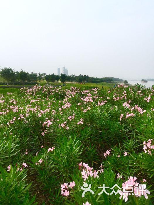 绿岛湖湿地公园-图片-佛山景点-大众点评网