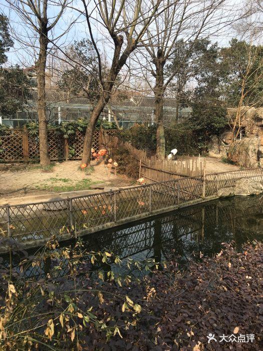 苏州动物园图片 - 第14张