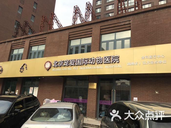 北京宠爱国际动物医院(奥运村店)怎么样