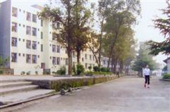 仁寿县禄加中学