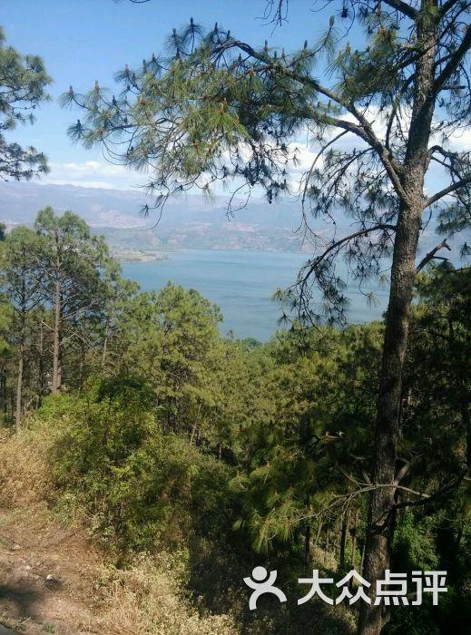 泸山风景名胜区-图片-西昌市周边游-大众点评网
