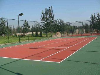 天泰网球场
